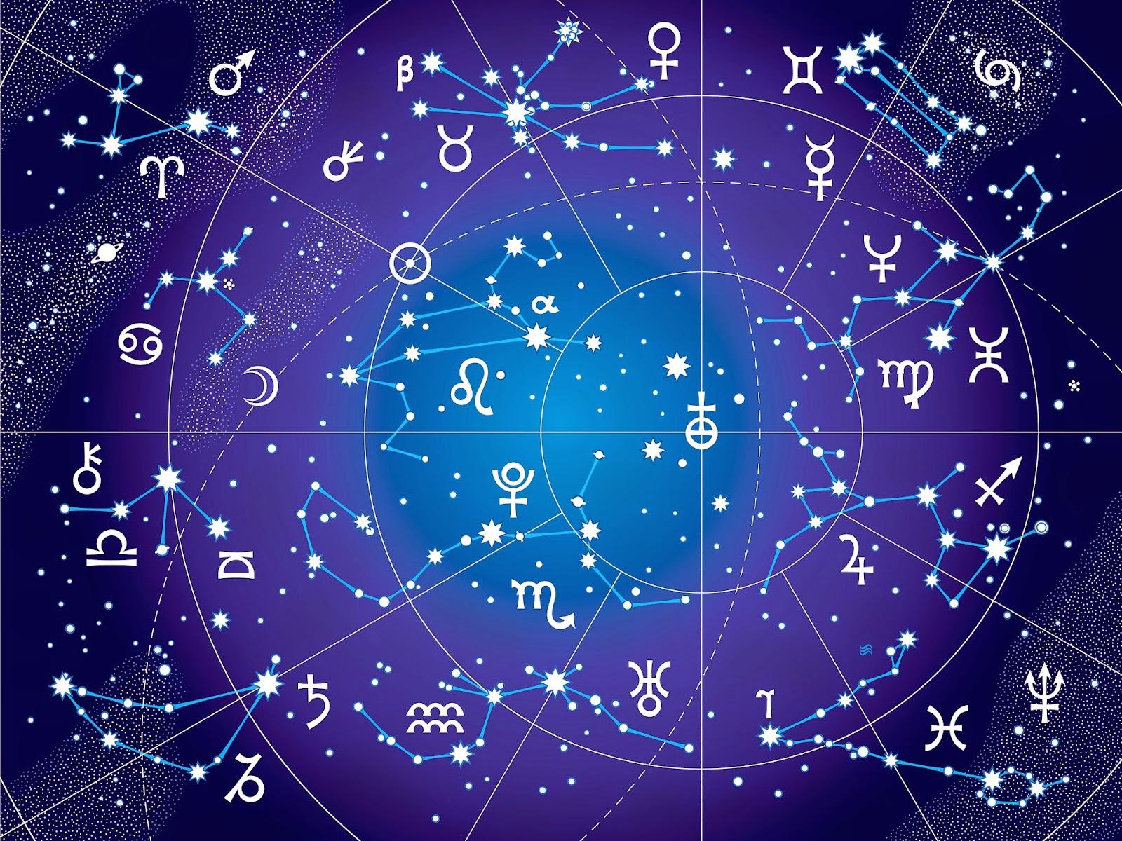 nadi system of human